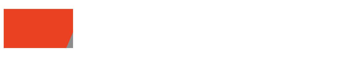 Amerigo Logo